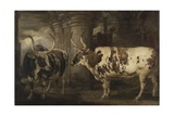 Portraits of Two Extraordinary Oxen, the Property of the Earl of Powis, 1814 Giclee Print by James Ward