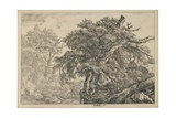 The Great Beech with Two Men and a Dog, C. 1650-1655 Giclee Print by Jacob van Ruisdael