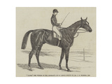 Alarm, the Winner of the Emperor's Cup at Ascot Giclee Print by James Herring