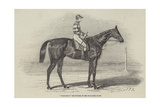 Sweetmeat, the Winner of the Doncaster Plate Giclee Print by James Herring