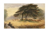 Lovers in Richmond Park (Windsor Park) Giclee Print by James Smetham