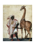 Moor from Barbaria with Giraffe Giclee Print by Jacopo Ligozzi