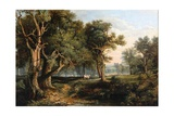 Woodland Scene Giclee Print by James Stark