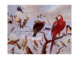 A Chorus of Birds, C.1650-1675 Giclee Print by Jan van Kessel the Elder