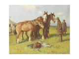 Cowhill Fair, C.1900-1919 Giclee Print by John Atkinson