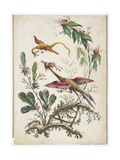Ornament. Chinoiserie. Flowers and Birds., 1770 Giclee Print by Jean Baptiste Pillement