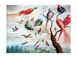 The Chorus of Birds, C.1650-1675 Giclee Print by Jan Thomasz. van Kessel