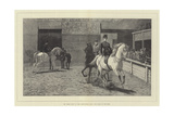 The Horse Show at the Agricultural Hall, the Arabs in the Ring Giclee Print by John Charlton