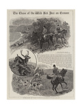 The Chase of the Wild Red Deer on Exmoor Giclee Print by John Charlton