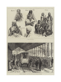 Sketches of the Sudan Giclee Print by Johann Nepomuk Schonberg