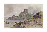 Donolly Castle, Scotland Giclee Print by John Brett