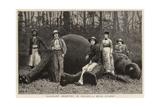 Elephant Shooting in Ceylon, a Huge Quarry Giclee Print by John Charles Dollman