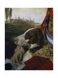 Dog Giclee Print by Johann Zoffany