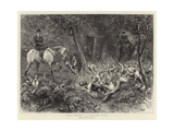 Hard Pressed, a Woodland Scene Giclee Print by John Charlton