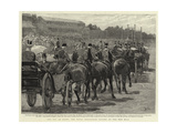 Cup Day at Ascot, the Royal Procession Passing Up the New Mile Giclee Print by John Charlton
