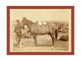 Comanche Reproduction procédé giclée par John C. H. Grabill