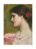 Camellias, C.1880 Giclee Print by John William Waterhouse