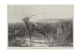 Still as Death Giclee Print by John Trivett Nettleship