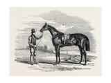 Foigh-A-Ballagh, the Winner of the Great St. Leger and Grand Duke Michael Stakes Giclee Print by John Frederick Herring Snr