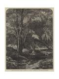 Haunt of the Fallow Deer Giclee Print by John Samuel Raven