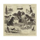 The Dog Show at the Crystal Palace Reproduction procédé giclée par John Charles Dollman