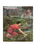 A Study: Maidens Picking Flowers by a Stream, C. 1909-1914 Giclee Print by John William Waterhouse