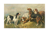Hounds with a Hare Giclee Print by John Emms