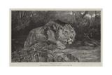 Stealthy Fate Giclee Print by John Trivett Nettleship