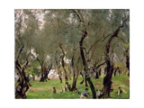 The Olive Grove, C.1910 Giclee Print by John Singer Sargent