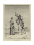 Arab and Camel Giclee Print by John Frederick Lewis