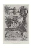 Scenes in the Tonga Islands Giclee Print by Joseph Holland Tringham