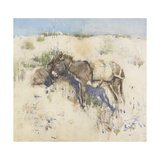 Tangier, 1887 Reproduction procédé giclée par Joseph Crawhall