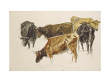 Study of a Group of Cows, C. 1801 Giclee Print by Joseph Mallord William Turner