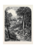 The Path to Blackdown and the Surrey Highlands Giclee Print by Josiah Wood Whymper