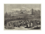 The Vintage in Medoc, the Vineyards of Chateau Lafitte Giclee Print by Jules Pelcoq