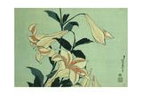 Lirios blancos Lámina giclée por Katsushika Hokusai