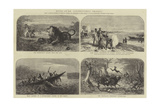 Notes of Dr Livingstone's Travels Giclee Print by Josiah Wood Whymper