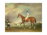 The Cur Chestnut Racehorse with Jockey Up on Newmarket Heath Giclee Print by John E. Ferneley
