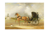 William Massey-Stanley Driving His Cabriolet in Hyde Park, 1833 Giclee Print by John E. Ferneley