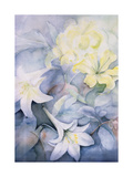 Lilium, Hearts Desire and Imperiale Giclee Print by Karen Armitage