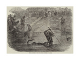 Hindoo Bathers in the River Jumna Surprised by a Snake Giclee Print by Joseph-Austin Benwell