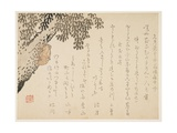 Shell of a Cicada, C.1848-53 Giclee Print by  Kangyoku