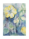 Hibiscus, Yellow Giclee Print by Karen Armitage