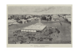 The Market, Bloemfontein Giclee Print by Joseph Holland Tringham