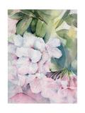 Morning Magic Giclee Print by Karen Armitage