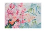 Lathyrus Odoratus, Sweet Pea Giclee Print by Karen Armitage
