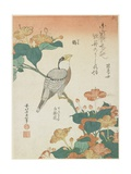 Japanese Grosbeak and Four-O'Cloks, C. 1833 Giclée-Druck von Katsushika Hokusai