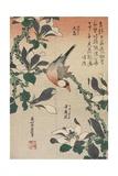 Java Sparrow and Magnolia, C. 1832 Giclée-Druck von Katsushika Hokusai