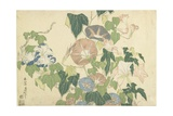 Frog and Morning Glories, C. 1832 Giclée-Druck von Katsushika Hokusai