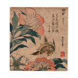 Shakuyaku Kana Ari, Peony and Canary. [1833 or 1834], 1 Print : Woodcut, Color ; 19.2 X 17.4 Giclee Print by Katsushika Hokusai